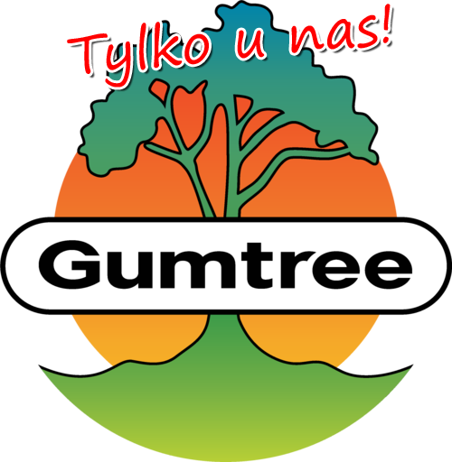 eksport ofert do Gumtree